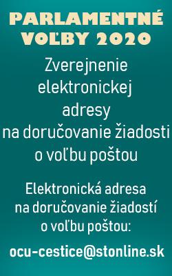 Voľby 2020 - info - Cestice